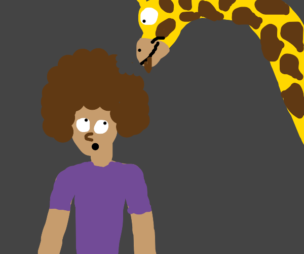 Giraffe taking a bite of your Afro