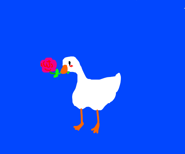 Untitled Goose gives anon a rose