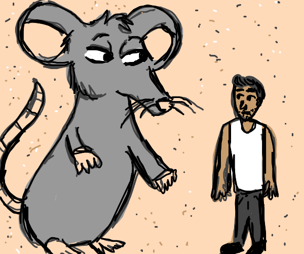 rat is bigger than human