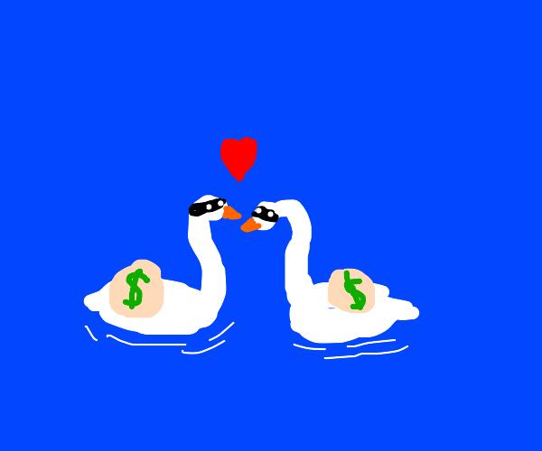 Swan robbers in love