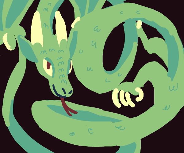 fun twisty dragon