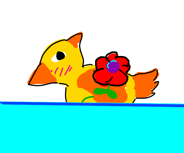 considerate duck giving you a rose