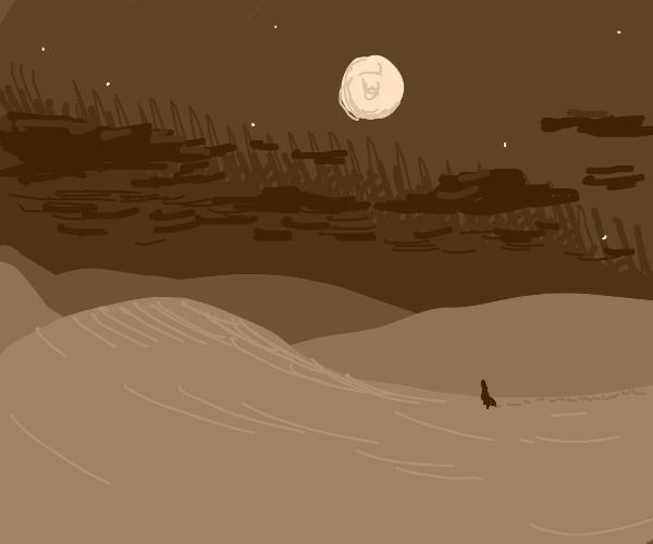 sand dunes on a beautiful night