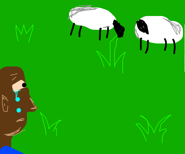 steve looks at sheep and cries