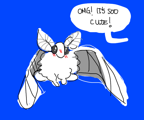 Cute moth/butterfly