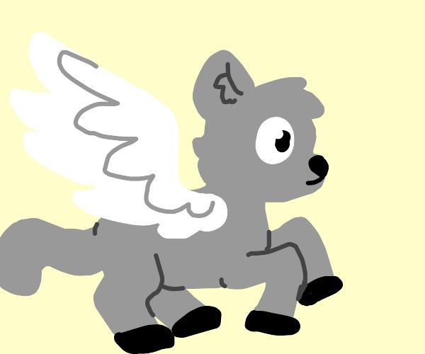 Pegasus cat