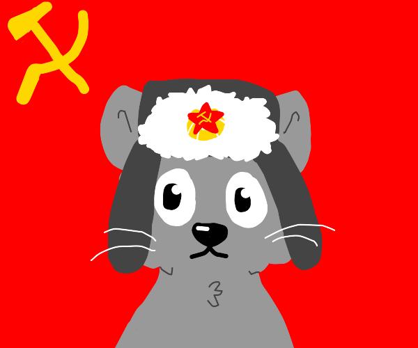 THE SOVIET CAT UNION