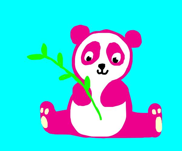 A pink panda