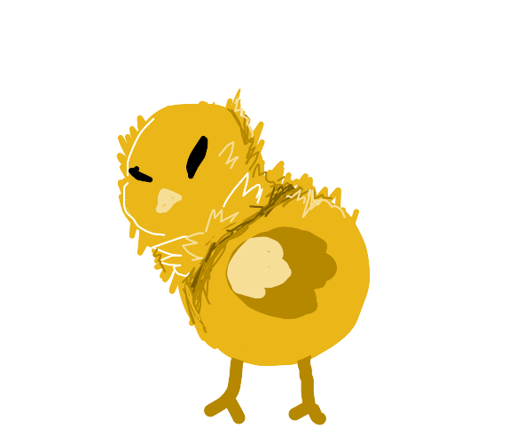 Chick ( The Baby Of An Chicken )