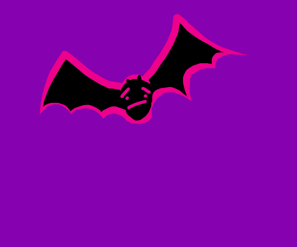 nervous flying bat