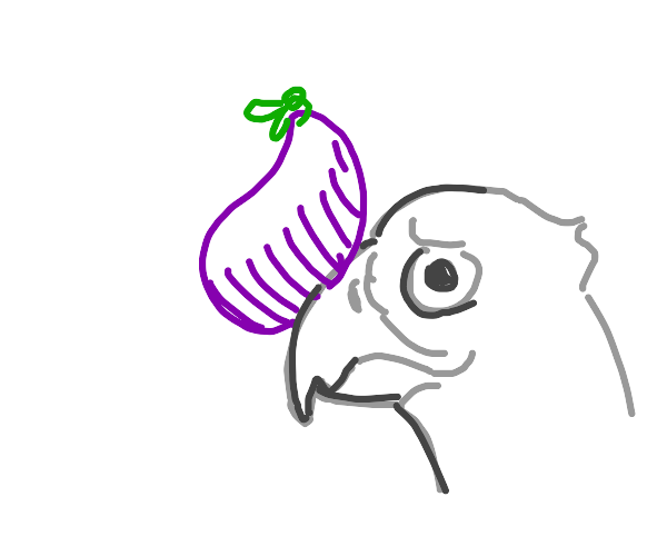 Falcon with an Eggplant on his beak