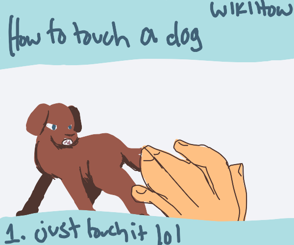 Wikihow showing how to touch a dog