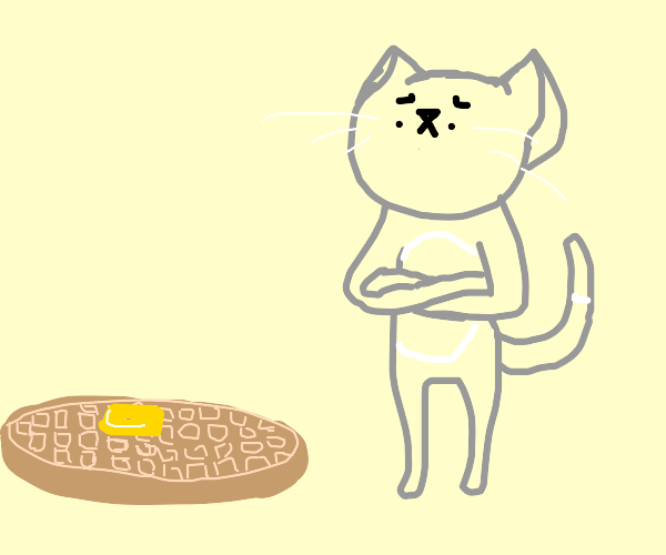 Cat looks at waffle with distrust.