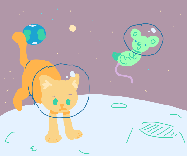 cat and rat in space on the moon