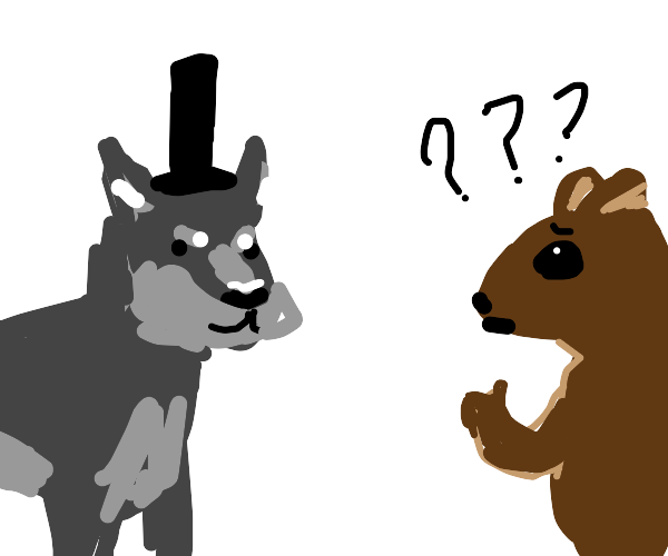 wolf in top hat confuses a squirell