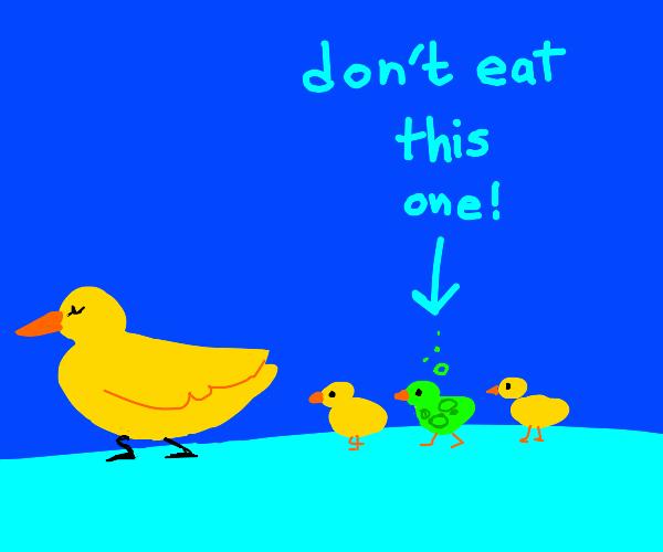 poisonous duckling