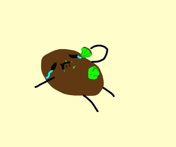 Sad kiwii eating itself