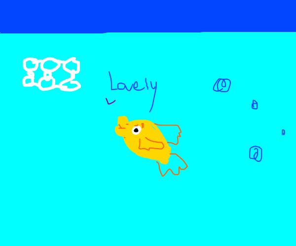 Goldfish enjoying trash