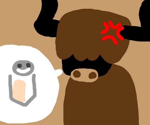 Give salt to the angry yak