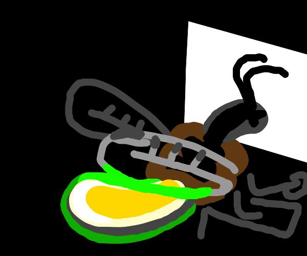 Firefly Programmer