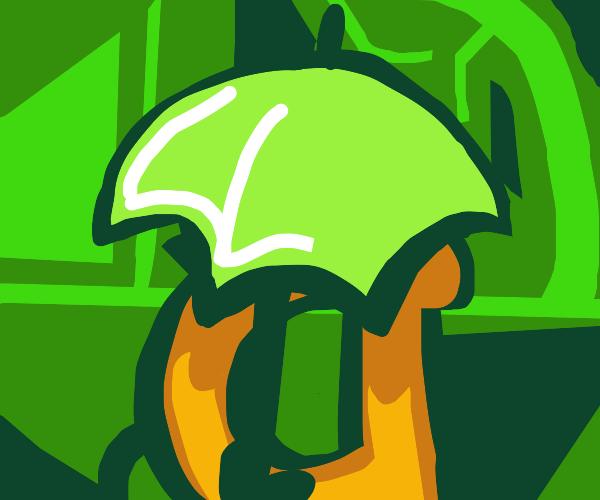 Using a Leaf as an umbrella!