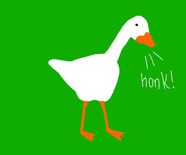 untitled GOOSE  goes honk