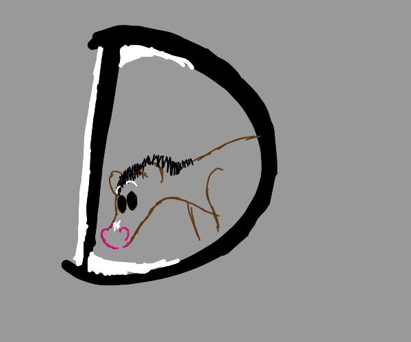 """Horse sticking head through the letter """"D"""""""