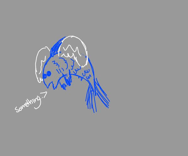 Winged fish says something