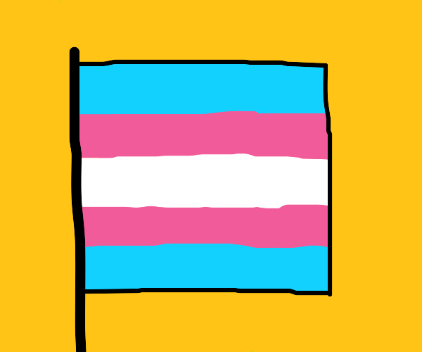 Trans Rights!!