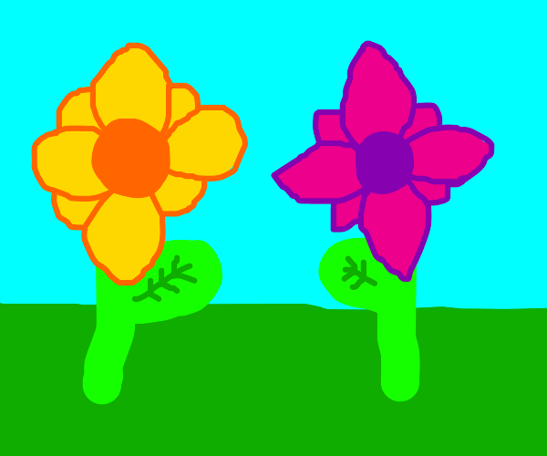 yellow flower and pink flower