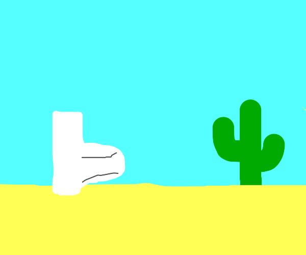 toilet in the desert