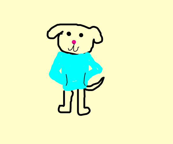 Dog In A Sweater