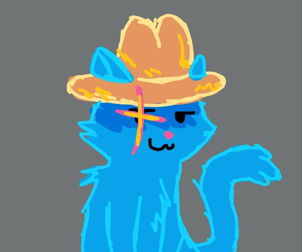 blue cowboy cat