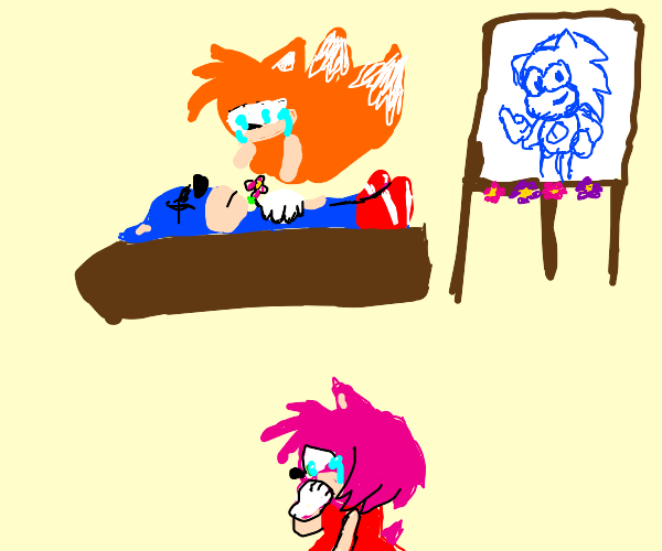 Sonic's funeral