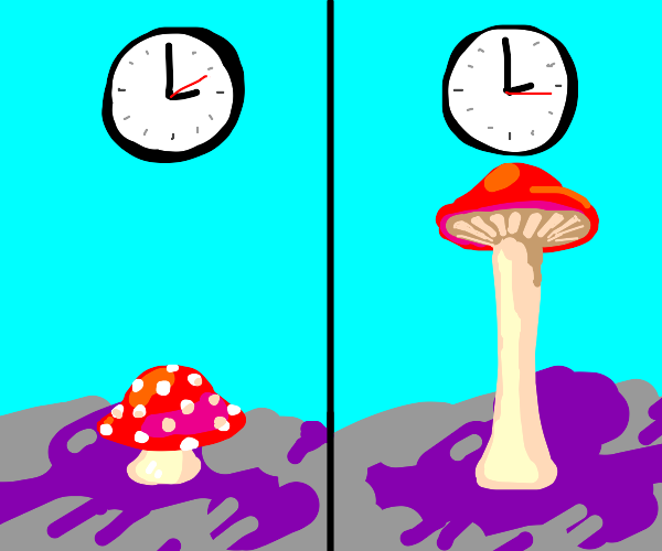 Mushroom rapidly grows taller