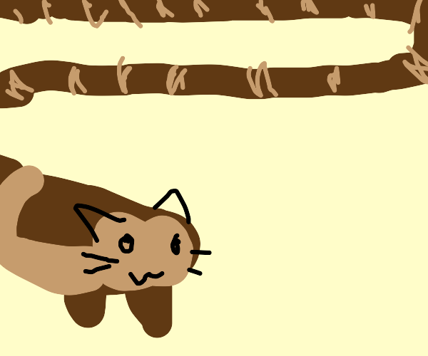 Furret :)