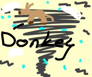 Donkey in a Tornado