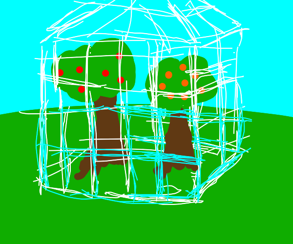 Greenhouse with an assortment of fruit