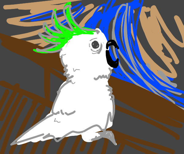 """""""The Scream"""" by Munch, but it's a cockatoo"""