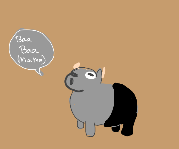 Baby goat wearing black pants