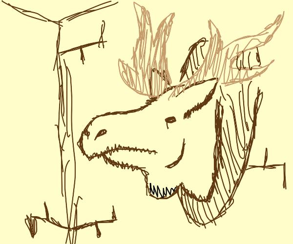 Moose head on a wall