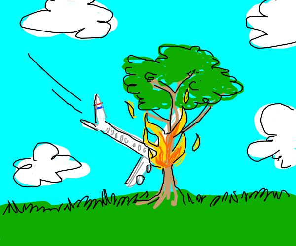 Plane crashed into a tree