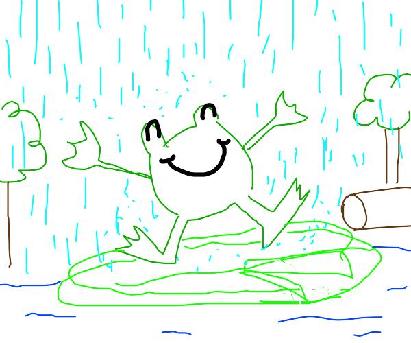 Happy frog in rain