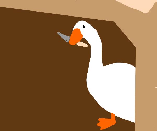 Evil duck/ goose