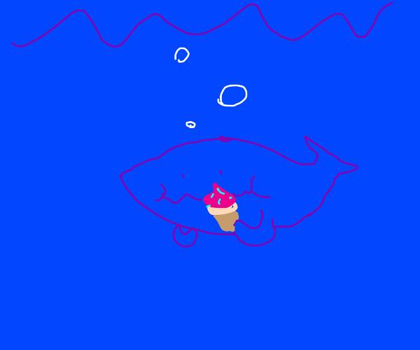 whale eats a cupcake