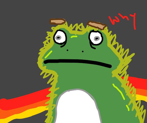 Furry Frog