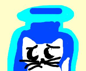sad white kitty in a jar