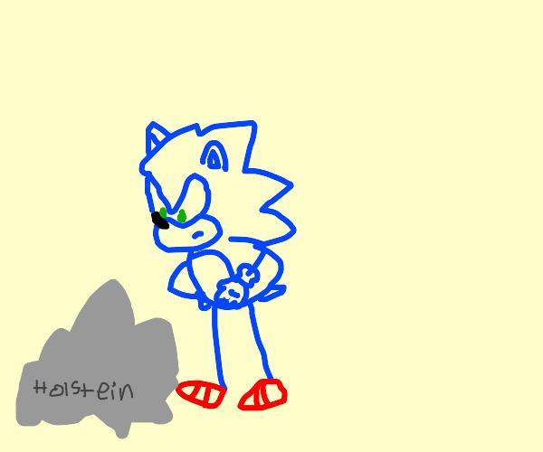 Hedgehog mad at holstein rock