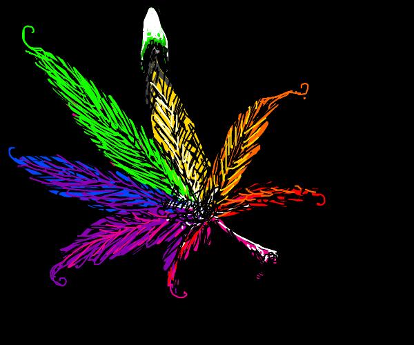 burning rainbow marijuana