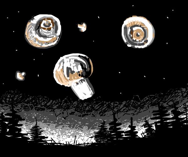tasty mushrooms in the sky